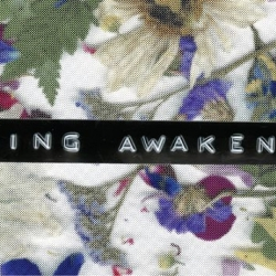 Spring Awakening Presented By The Penn State Thespians